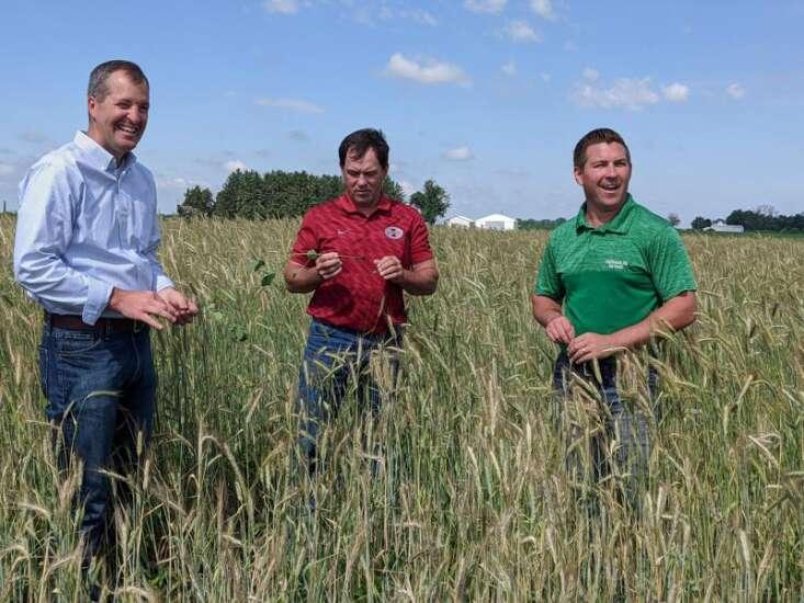 Farmers need incentives to plant cover crops, Eastern Iowa farmer tells ag secretary