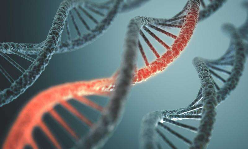DNA is the next frontier in personal privacy