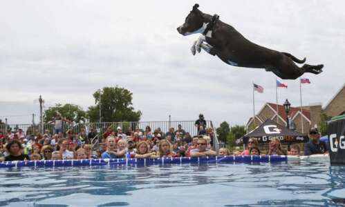 Freedom Festival fires up with parade, DockDogs and more