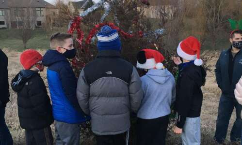 Shueyville neighbors spruce up lone red cedar for holidays