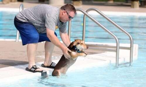 Pups hit the pool this weekend at K9Splash! in Cedar…