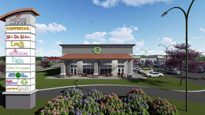 Plan: 'Power retail center' would replace Peck's garden center in Cedar Rapids
