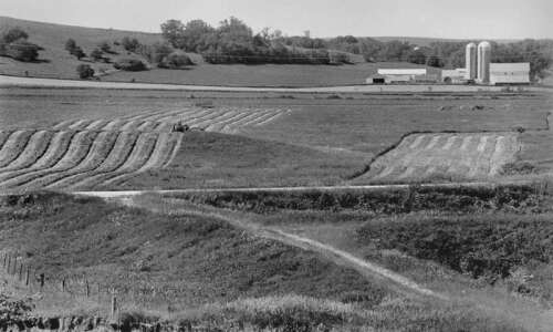 Surviving the new American farm crisis