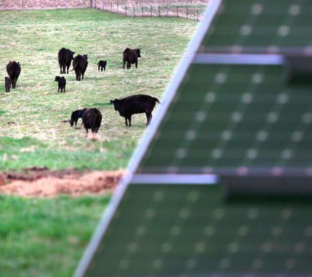 Clinton: Invest in rural clean energy