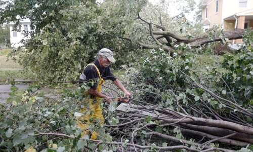 Rescuing your garden after storm damage