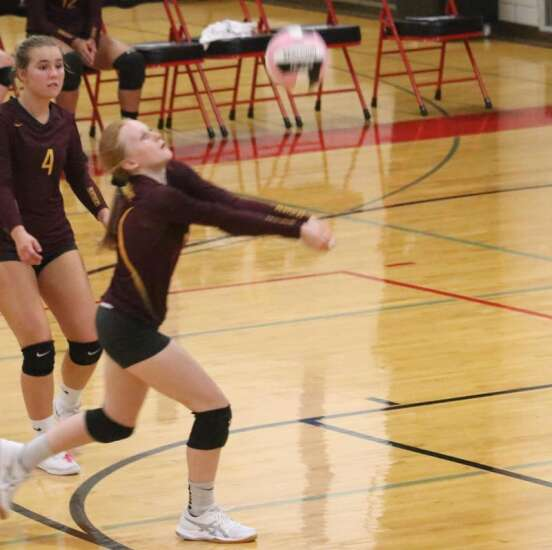 Bloodhounds rally past Panthers in four