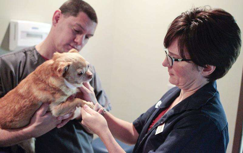 Critter Crusaders will host benefit concert this month to help pets in need of care