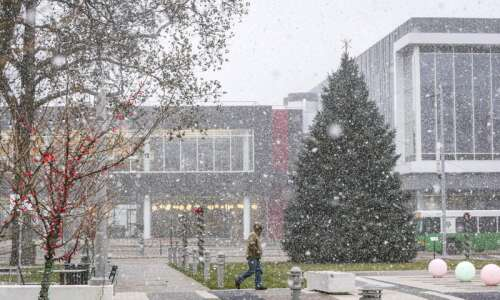 City of Cedar Rapids seeking holiday tree