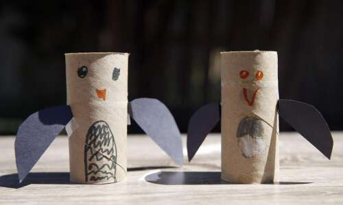 Turn toilet paper tubes into a bird