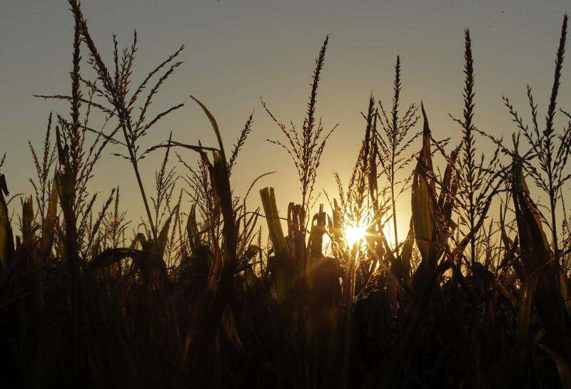 Iowa rains aid crops, ease drought concerns