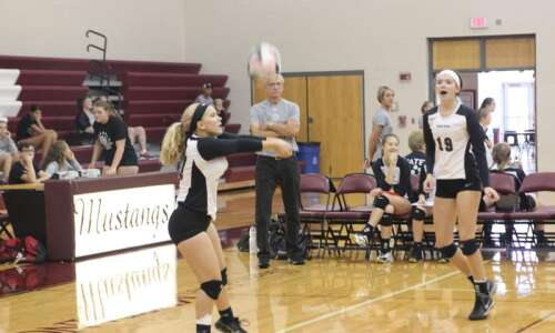 Mount Vernon's Dolfi Kalm a 'volleyball guru'