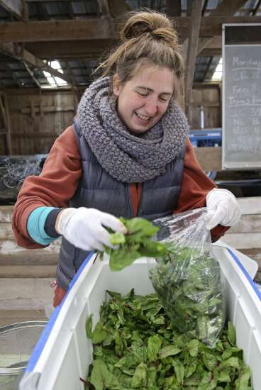 $50,000 grant awarded in Johnson County for Veggie Rx Pilot Program