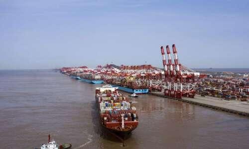 China halts some soy, pork imports