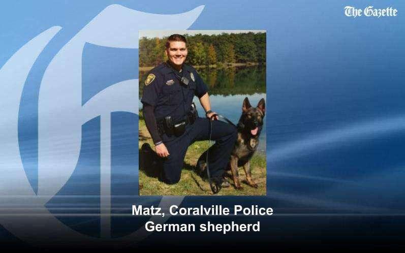 Cedar Rapids man accused of assaulting police dog