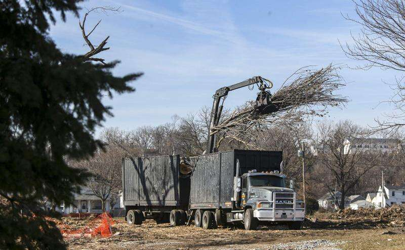 Cedar Rapids gearing up to fully launch ReLeaf initiative after derecho