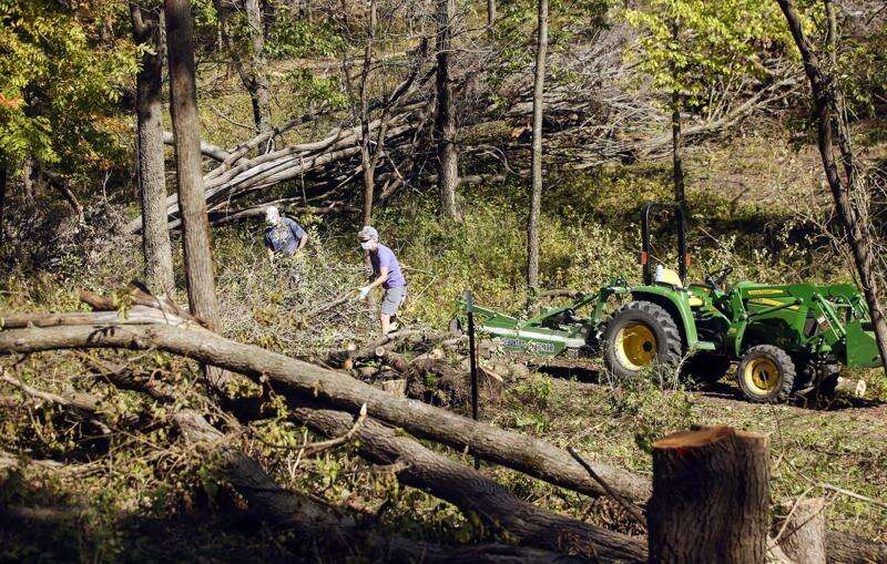 To honor the trees lost in the derecho, Prairiewoods is holding a memorial service