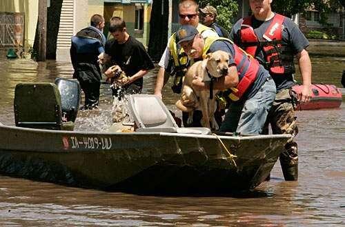 Flood 2008-Friday