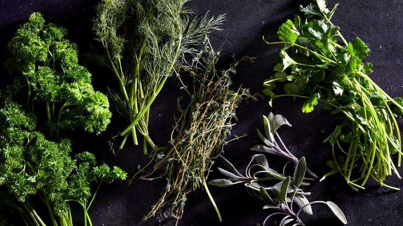 How to make the most of your fresh herbs