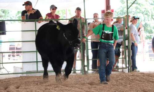 Henry County fair set to be normal