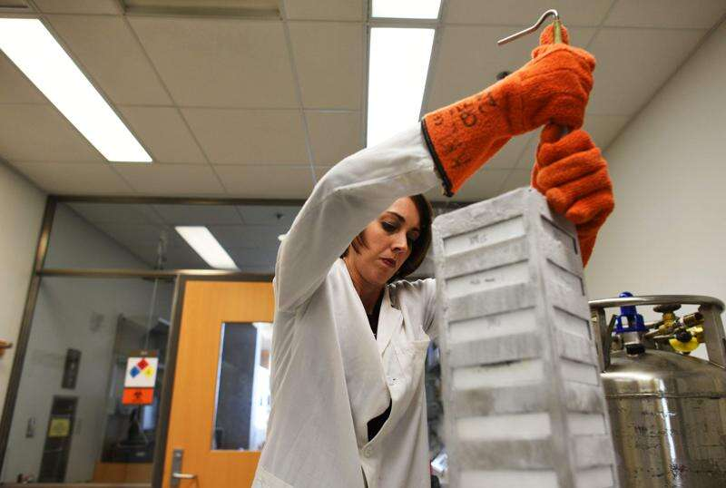 UI researchers aim to personalize cancer treatment