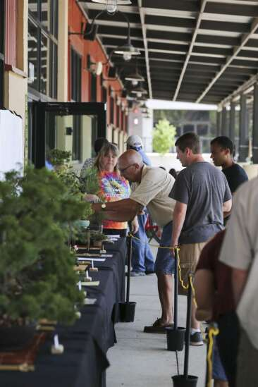Photos: Iowa Bonsai Association