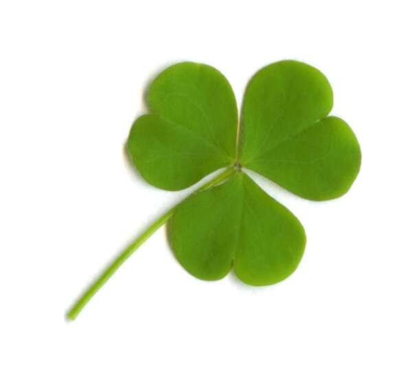 Luck is not a strategy in job searching and hiring