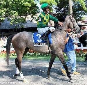A true rarity: Iowa ownership of a Kentucky Derby horse