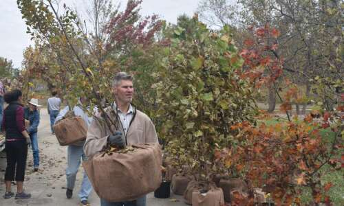 Replanting the landscape: Cedar Rapids companies help employees and their…