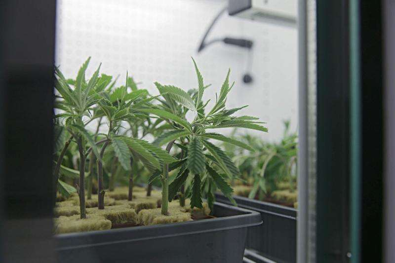 Iowa officials work with medical marijuana manufacturers to control smell
