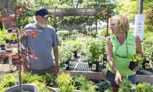 Local garden centers see surge in stuck-at-home customers investing in…