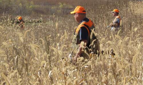 Iowa hunters hit their mark as pheasant harvest hits 10-year…