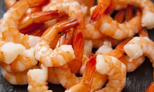 Study: Seafood consumption tied to more sex and faster conception