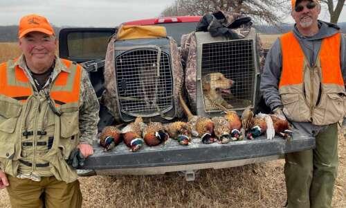Final pheasant hunt of season brings adrenaline rush