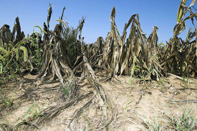 Drought conditions persist in Iowa