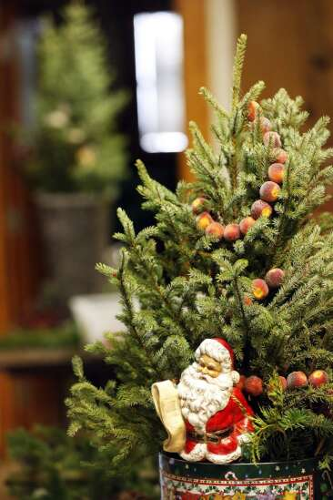 Indian Creek Nature Center moves Nature's Noel fundraiser online