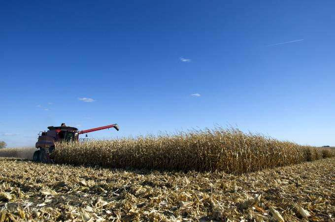 Drought-year harvest surprises some Iowa farmers