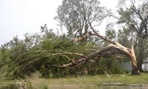 Cedar Rapids loses half its tree canopy in derecho