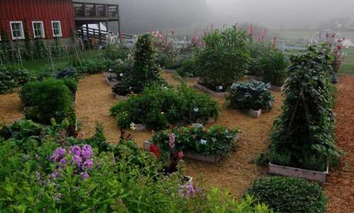 Decorah's Seed Savers Exchange: A destination for gardeners and non-gardeners…