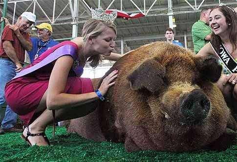 Indiana hog wins Big Boar crown at Iowa State Fair