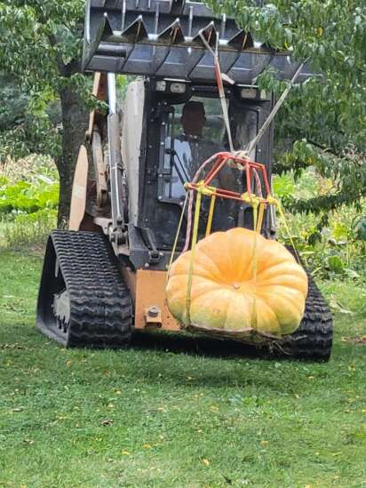 Dave Miller rounds out pumpkin season