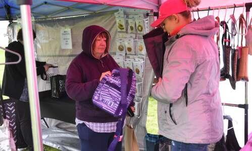 Rain dampens craft fair in Trenton