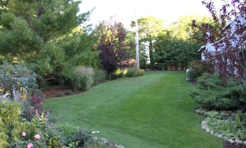 Have the yard that neighbors envy