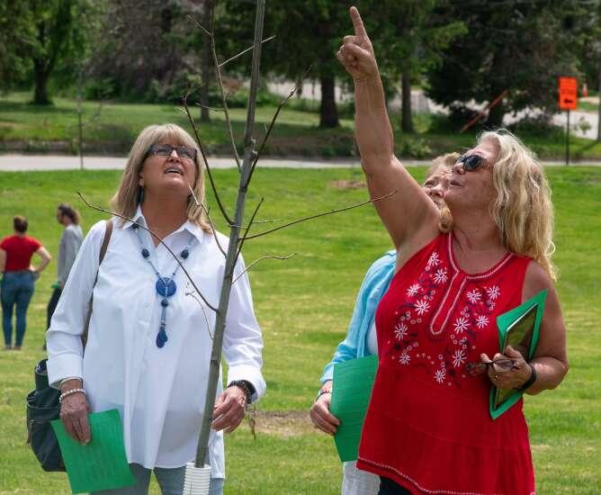 In wake of derecho, Washington High School arboretum starts to grow