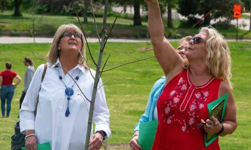 27 new tree species grow at Washington High after derecho