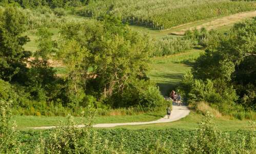 At Wilson's Orchard, take a walk, eat an apple —…