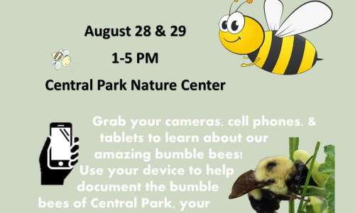 Help survey bumble bees this weekend at Jones County park
