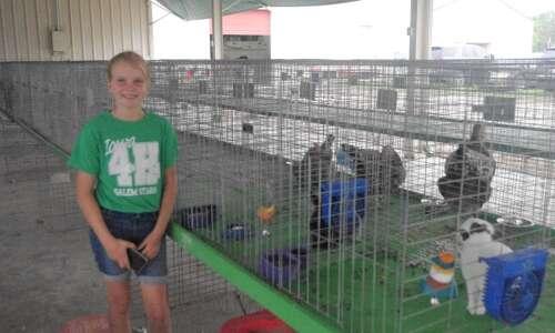 Henry County fair kicks off