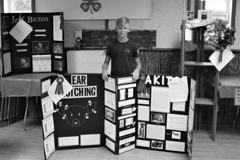 Static exhibits
