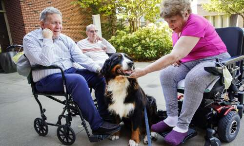 Meet Hope the therapy dog, Mercy Hallmar's new resident