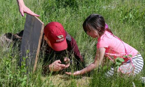 'Nature is taking itself back' through Cedar Lake biodiversity research